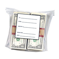 Cash Security Bag